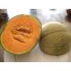 Melon cantaloup - Cucumis melo var. cantalupensis 40 semillas