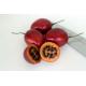 Tamarillo / Solanum betaceum 35 graines